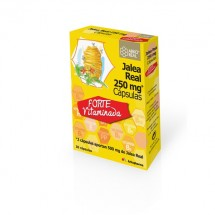 Arkopharma Jalea Real Vitaminada 250 mg 30 Capsulas