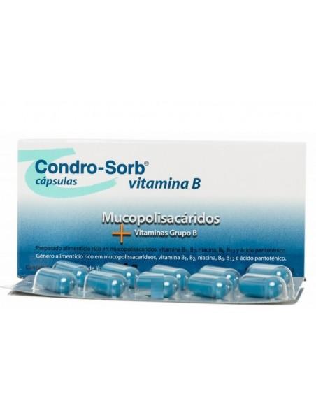 Condro-Sorb 60 Capsulas