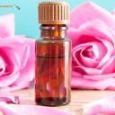 Rosa Mosqueta, lo más natural para cuidar tu piel